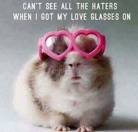 Can't see all the haters when I got my love glasses on. Wish I was able to wear my love glasses more often!