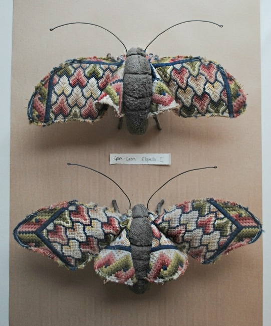 Textile moths By Mister Finch: