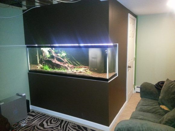 20 best diy aquaclear mods images on pinterest fish for Fish tank built into wall