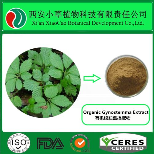 Organic Gynostemma Extract Active ingredient:: Gypenoside Plant Resource: Gynostemma pentaphyllum (Thunb.) Makino Specification: Gypenoside UV 20%, 30%, 40%, 80%, 90%, 98% Appearance: Light brown to yellow powder  Molecular formula : C80H126O44,  Molecular weight:1791.83 Detection method: HPLC CAS: 9000-38-8 Solubility:Soluble in water, alcohol and ether, chloroform, insoluble in petroleum ether. Usage: Pharmaceuticals, healthcares,and cosmetics