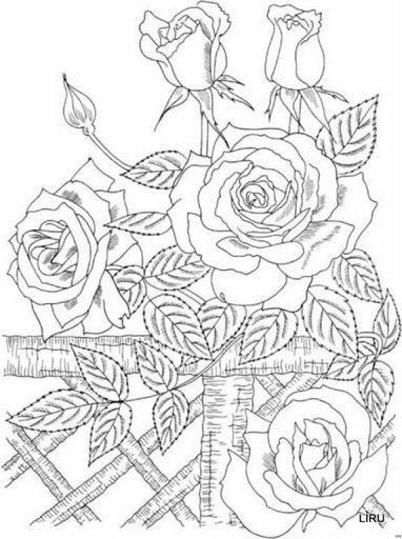 laminas para repujado pirograbado bordado coloring booksblank - Rose Coloring Pages Teenagers