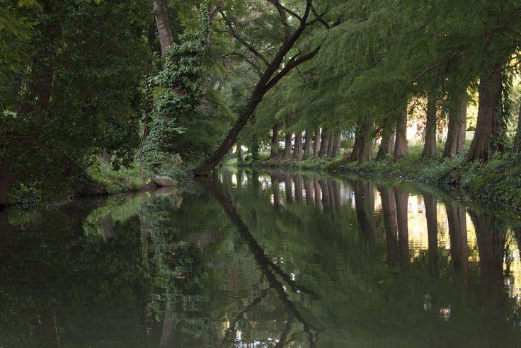 Élővíz csatorna Gyula - Magyarország