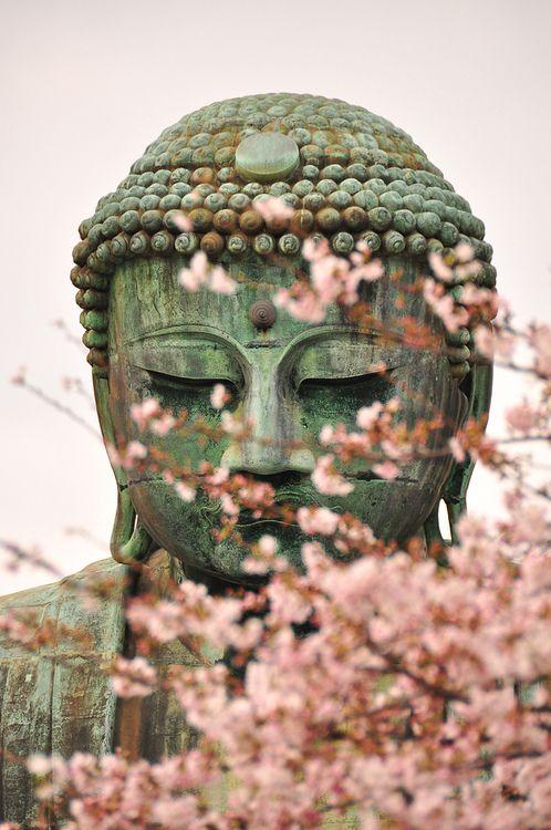 The great Buddha in Kamakura, Japan spring