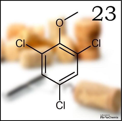 25 days of #PhytoChristmas : Chemistry Edition ! ********************************************** Cork taint, a wine fault characterized by the undesirable smells of a wine, is caused mainly by the presence of this compound. What molecule is it?  Yesterday's answer : 2-acetyl-1-pyrroline  #phytochemia #teamphytochemia #phytofamous #laboratory #lab #essentialoils #chemistryisfun #scienceisfun #phytochemistry #saguenay #quebec #phyto #scienceoninstagram #chemist #chemistry #scientist…
