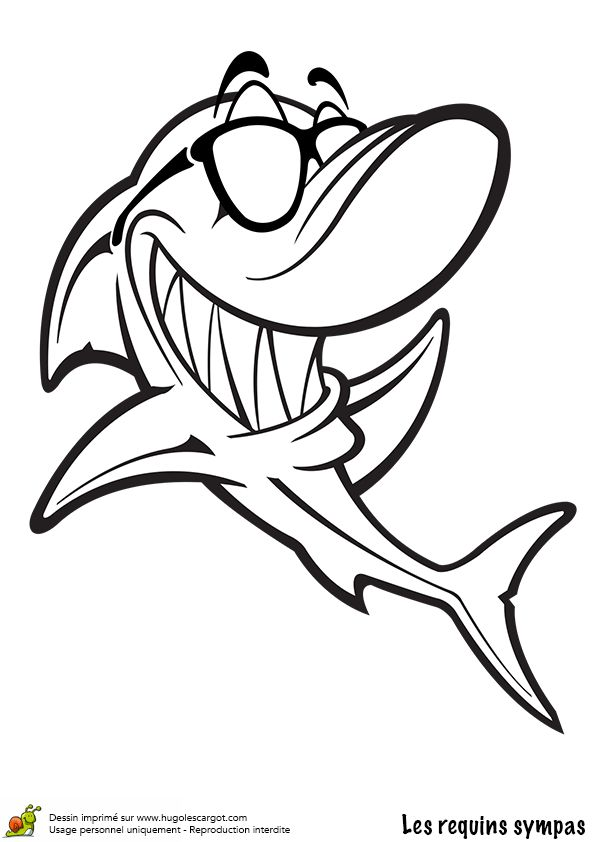 1035 best images about dessin et photo on pinterest how to draw animaux and perspective drawing - Modele dessin requin ...