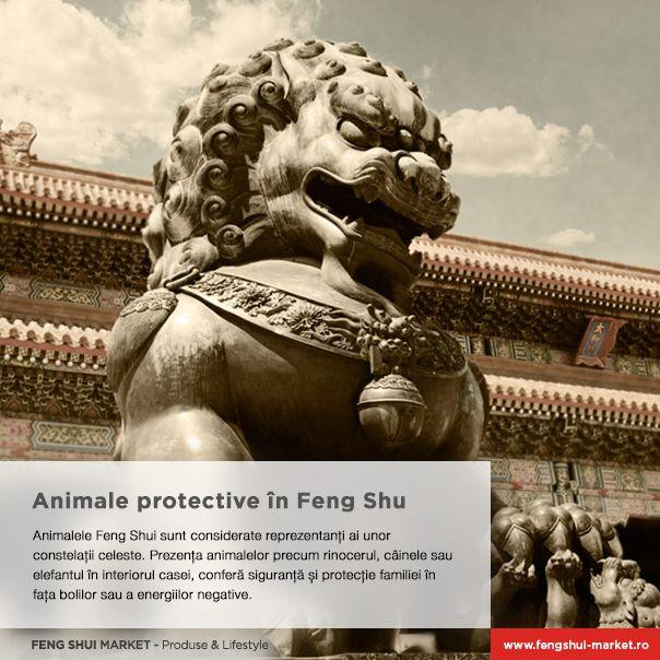 Găsește animalele protective pentru tine: http://www.fengshui-market.ro/produse/ro/animale-si-pasari-norocoase-3/»