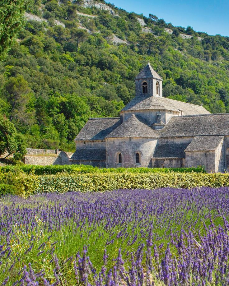 1405 best Provence and lavender images on Pinterest   Embroidery ...