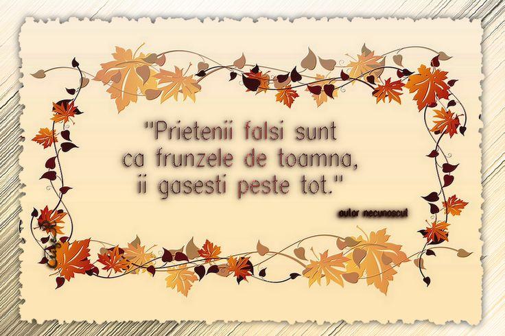 """""""Prietenii falsi sunt ca frunzele de toamna, ii gasesti peste tot."""" autor necunoscut"""