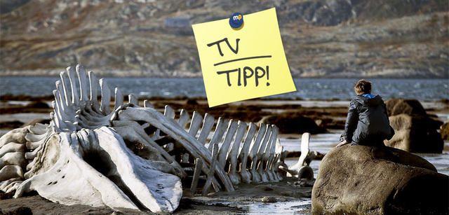 Leviathan - Russisches Gesellschaftsdrama heute im TV News |moviepilot.de