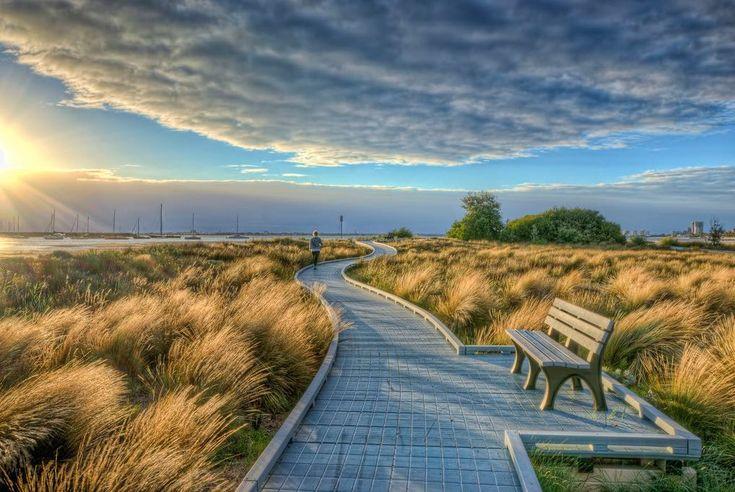 5 Of Melbourne's Best Walking Trails | Local Eyes: Melbourne