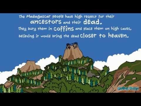 Madagascar Fact File video