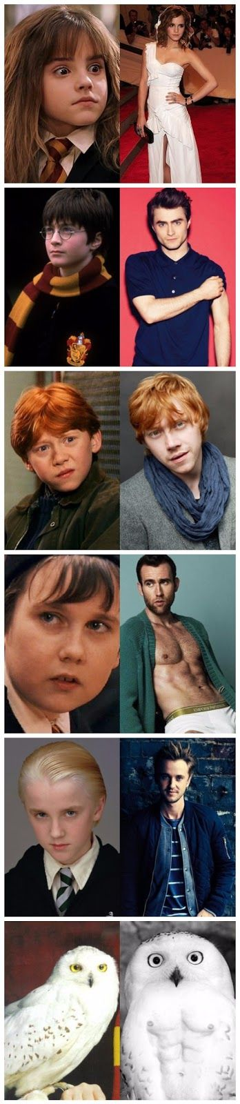 Funny Harry Potter Cast Then And Now