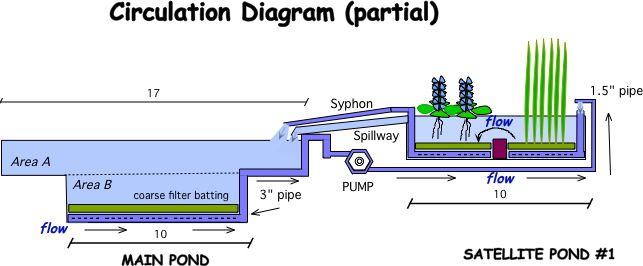 natural swimming pools diagram - Buscar con Google