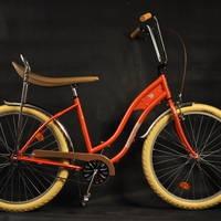 Bicicleta Pegas, din nou în piață. Ce planuri au antreprenorii?