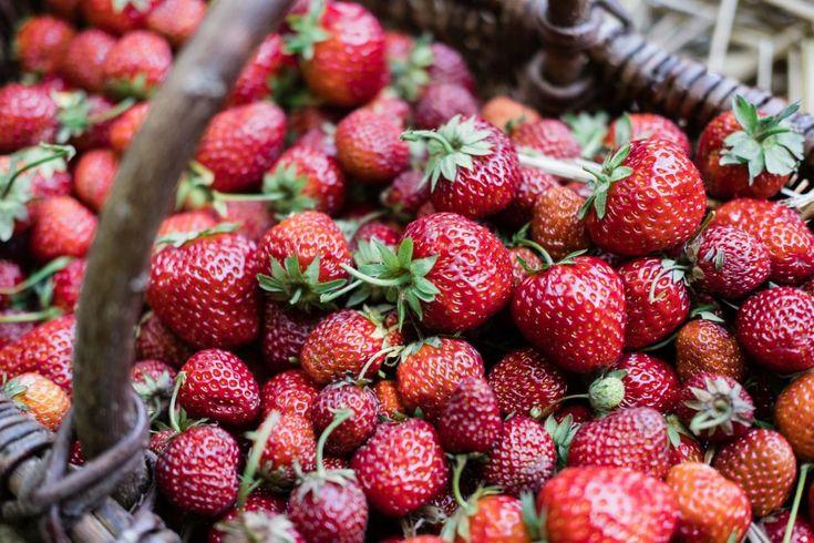 Erstellen Sie ein neues Erdbeerset