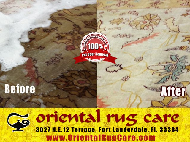 Oriental Rug Cleaning Tequesta : Is Renting a Rug Cleaning Machine a Good Idea