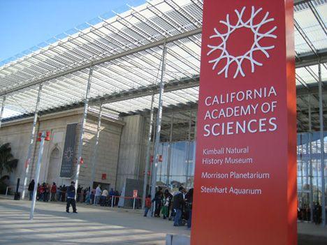 California Academy of Sciences:                       55 Music Concourse Dr San Francisco, CA 94118 (415) 379-8000