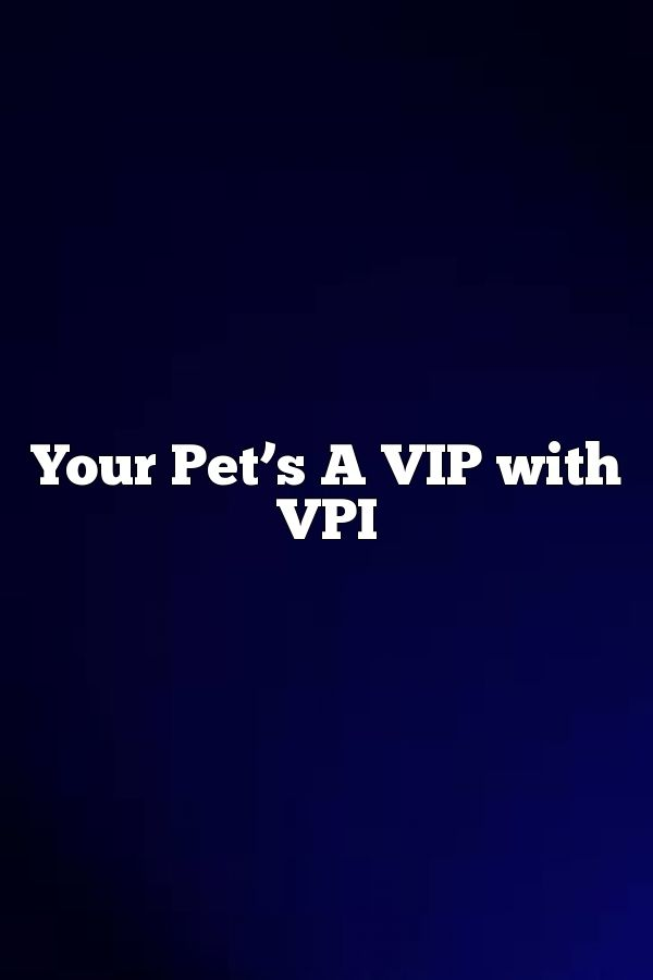 Your Pet S A Vip With Vpi Insurance Buzz Classic Car House