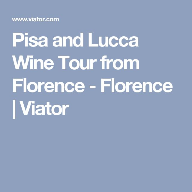 Pisa and Lucca Wine Tour from Florence - Florence | Viator