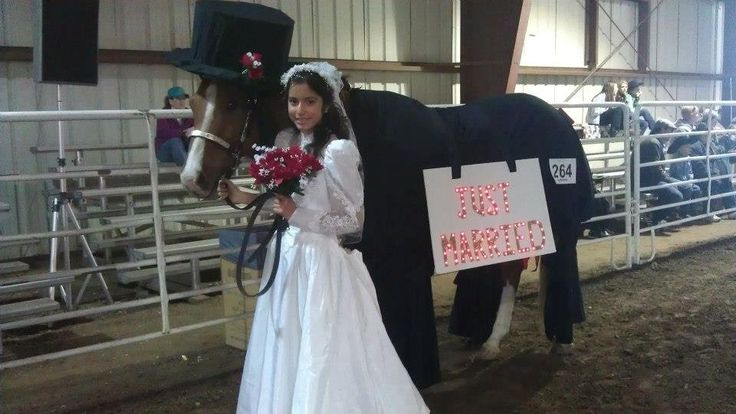 Horse costume - Bride and Groom