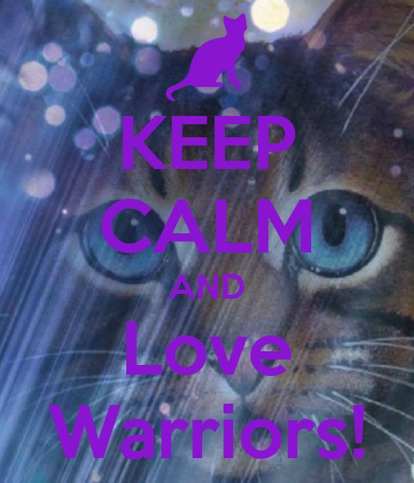 Book Trailer For Warriors Into The Wild: 25+ Best Ideas About Warrior Cats Quotes On Pinterest