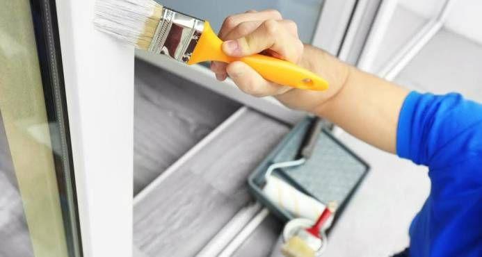 Lanzan pintura para combatir el mosquito Aedes aegypti