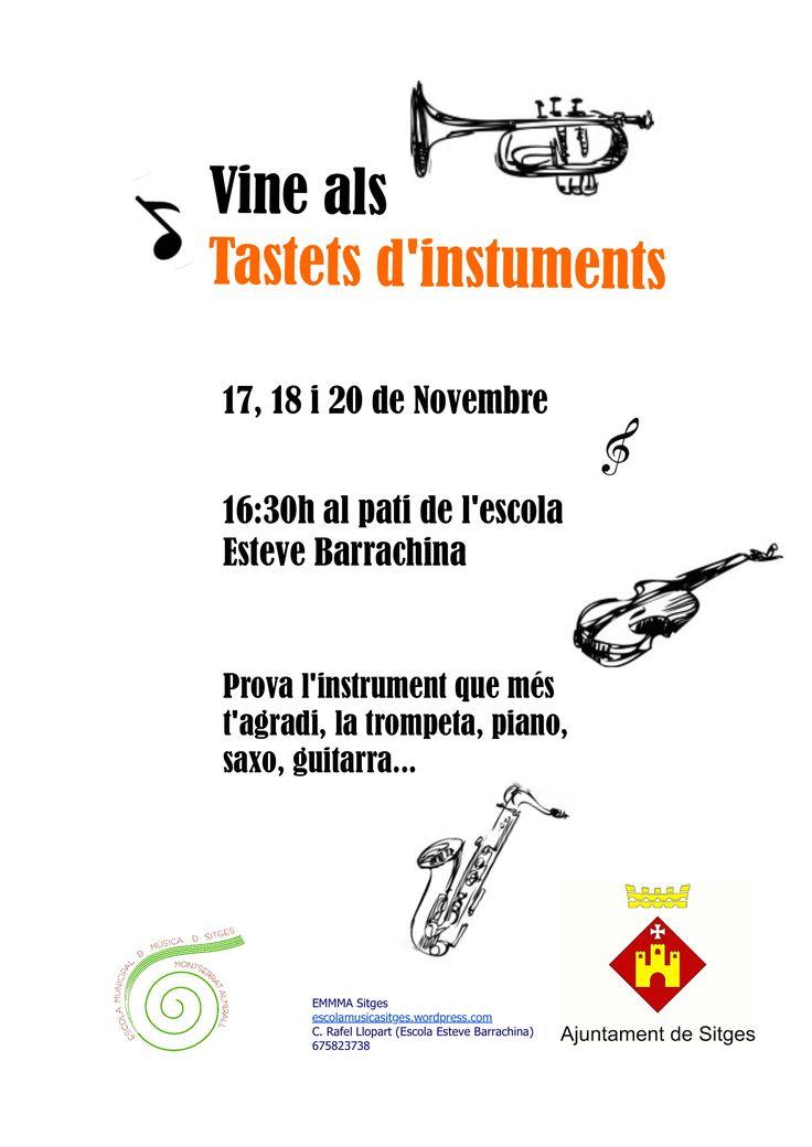 Tastets d'instruments-Esteve Barrachina
