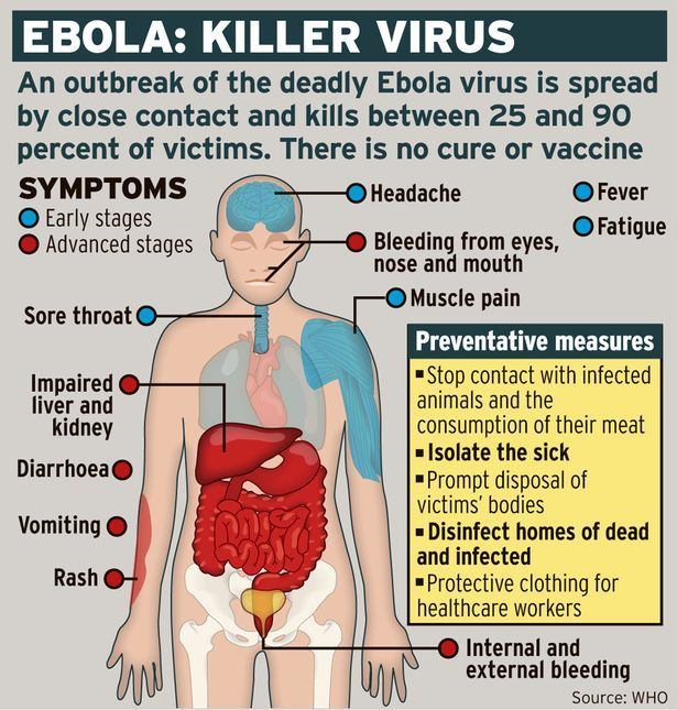 Ebola virus: What is it and how does it spread?