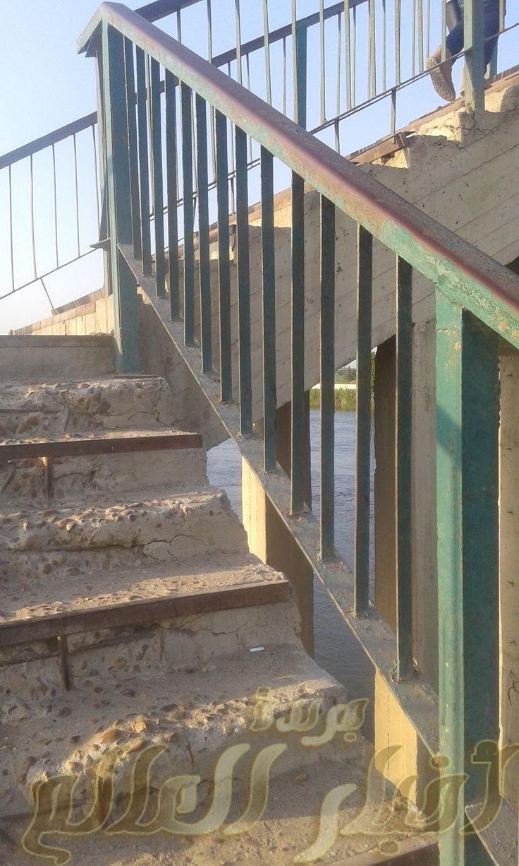 كوبرى الفل بأبوحماد شرقية Stairs Home Decor Decor
