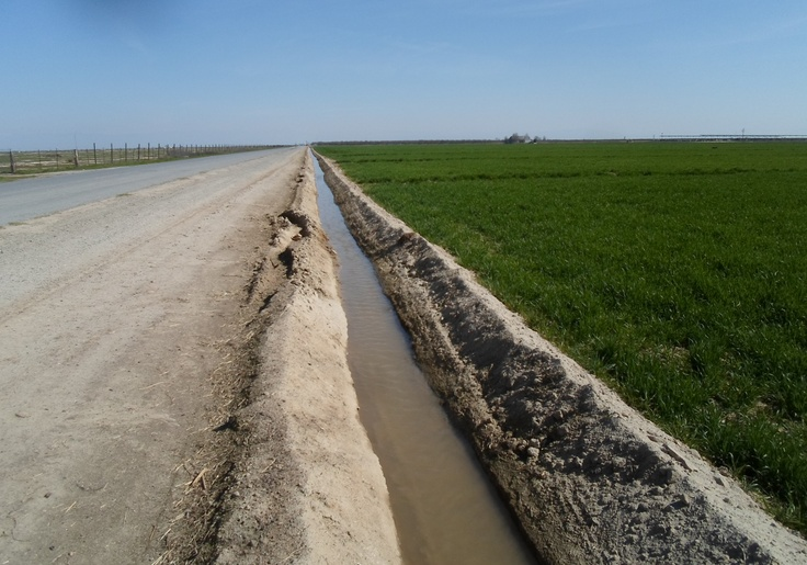 Done. Irrigation ditch in field in Kern County, California. For an east Texas kid uprooted from rivers and lakes these ditches became the new swimming holes. Wouldn't dare do it today with all the chemicals.
