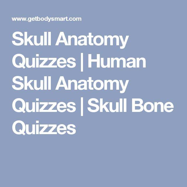 Skull Anatomy Quizzes   Human Skull Anatomy Quizzes   Skull Bone Quizzes