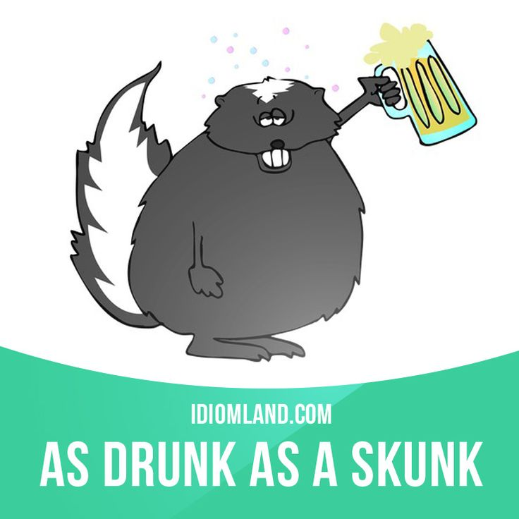 """""""As drunk as a skunk"""" means """"very drunk"""". Example: The man was as drunk as a skunk when he walked into the restaurant. #idiom #idioms #saying #sayings #phrase #phrases #expression #expressions #english #englishlanguage #learnenglish #studyenglish #language #vocabulary #dictionary #grammar #efl #esl #tesl #tefl #toefl #ielts #toeic #englishlearning"""