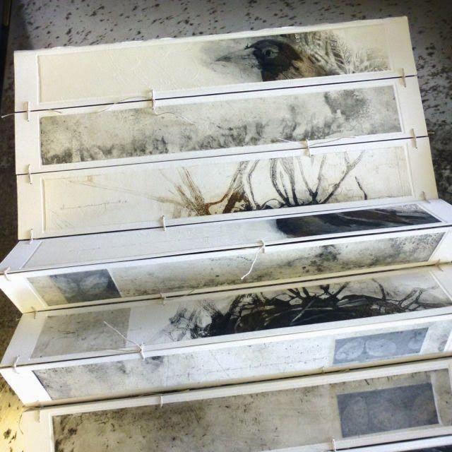 Bird book by Susan Bowers - beautiful! http://1.bp.blogspot.com/-Za_fwwbkV_U/U1dbFArmV4I/AAAAAAAAFK8/_VNZRNE_0OQ/s1600/P1060972.jpg