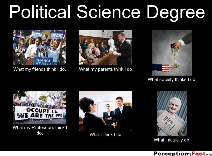 political science and international relationship degree