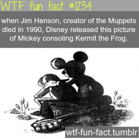 Disney fun facts   - Jim Henson was another amazing mind much similar to Walt Disney.