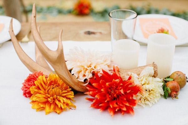love the orange and cafe au lait dahlias (not the antlers)