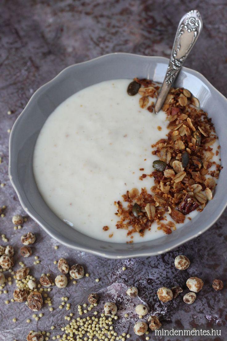 Növényi joghurt házilag: házi növényi tejből, probiotikus kultúrával, fermentáló gépben. Magmentes, vegán recept.