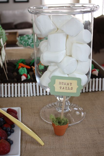 Peter Rabbit Birthday - Bunny Tails | CatchMyParty.com