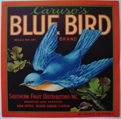 BLUE BIRD Vintage Winter Garden Florida Citrus Crate Label, 9x9