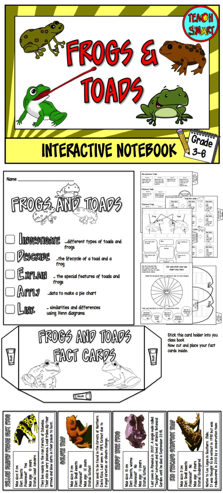 The interactive notebook uses cut and stick activities to help your class learn about different types of frogs and toads including their life cycle. Includes 20 different frog and toad fact cards   Investigate different types of toads and frogs Describe the lifecycle of a toad and a frog Explain the special features of toads and frogs Apply data to make a pie chart Link similarities and differences using Venn diagrams