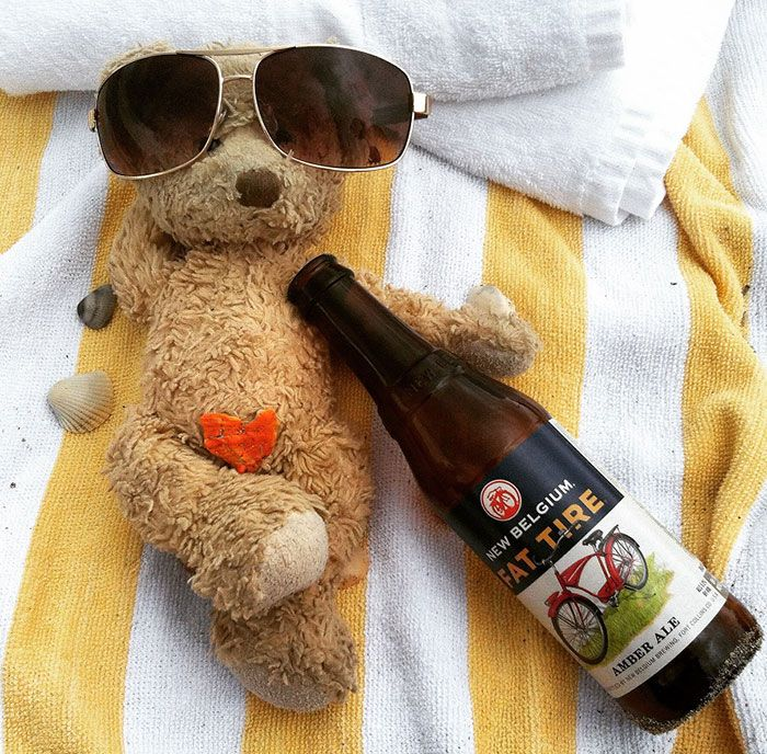 Everything Is Pawsibble: Pictures Of Bruno The Bear Travelling The World