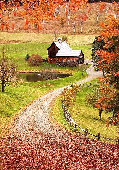 Country Living  I would love to live there...VT...CO...yup..enough room for 2-3 big dogs and a few big toys!