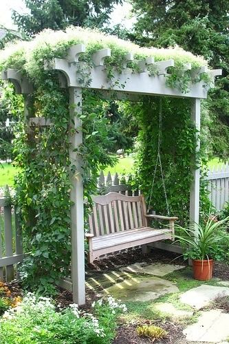 Swing bench with trellis.