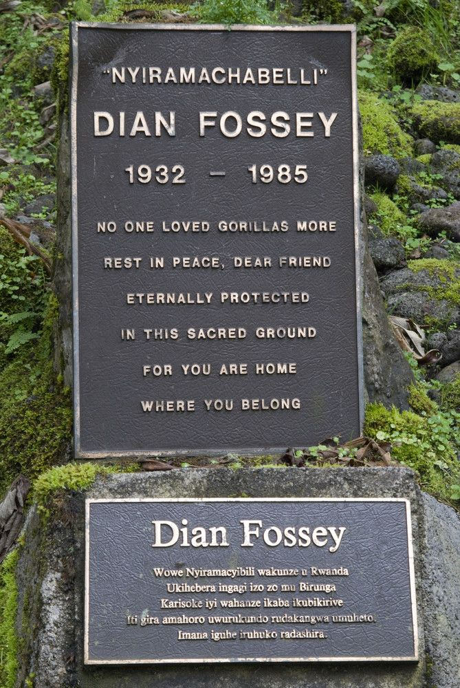 Women Of The Green Movement ~ Dian Fossey