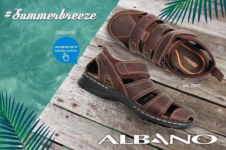 (2) Albano (@albanocoleccion) | Twitter