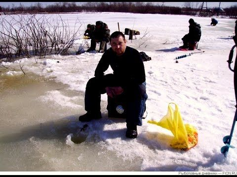 Ловля окуня налима щуки Зимняя рыбалка на Рыбинке.