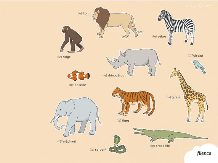 Animals-savanna_002_fr #ScreenFly #flience #french #education #wallpaper #language