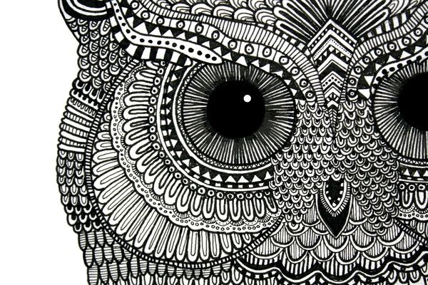 Owl Illustration 2.0 by Lucia Paul, via Behance