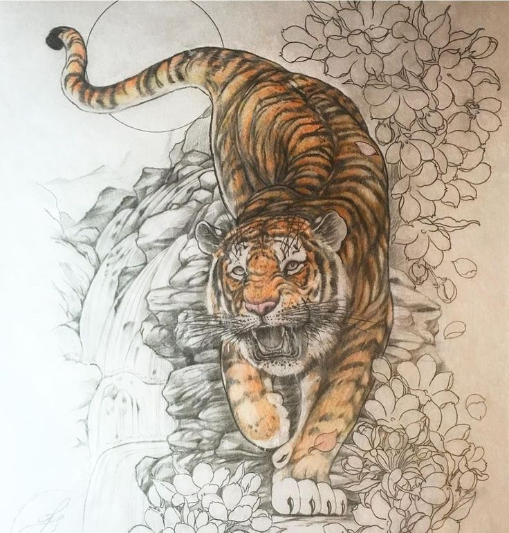 Картинка тигра значение