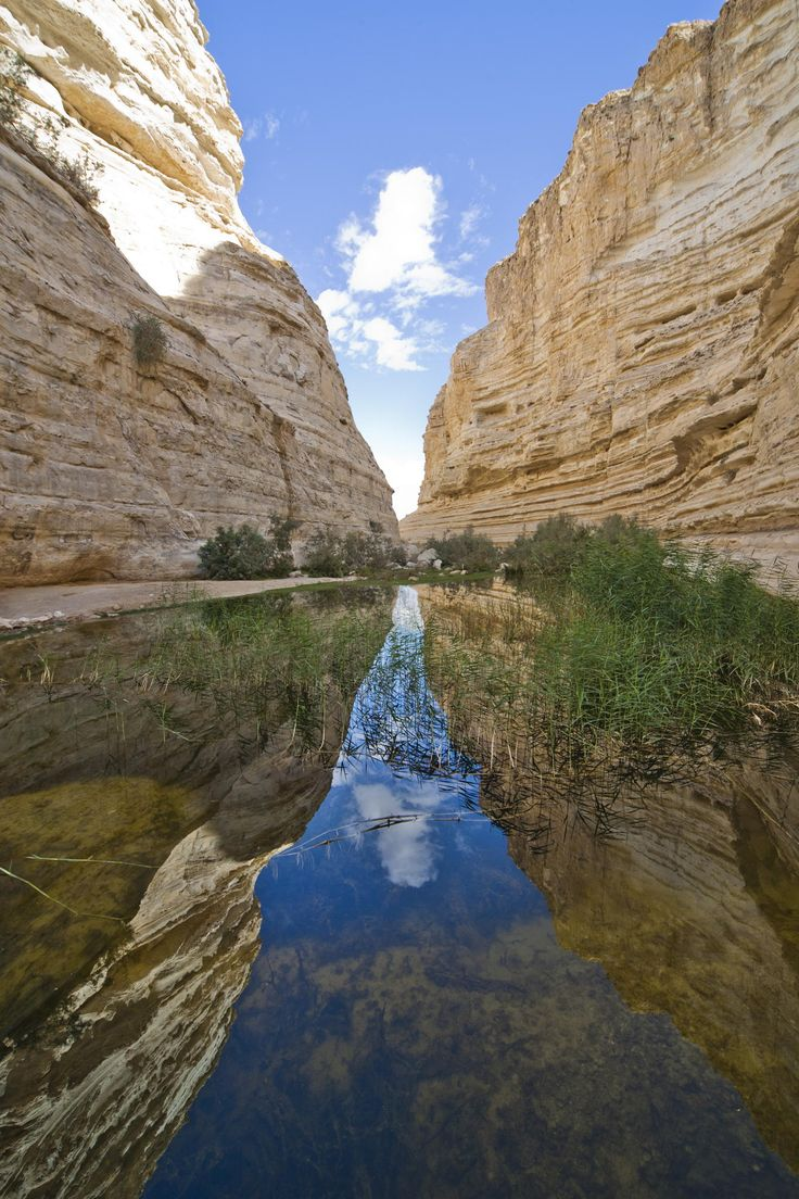 Ein Avdat, Negev, Israel by PhotoStock-Israel  on 500px